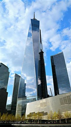 Freedom Tower by Stephen Stookey $freedom #tower