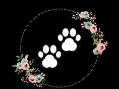 capa do insta ,dog Instagram Blog, Moda Instagram, Instagram Frame, Story Instagram, Instagram Design, Anna Disney, Instagram Background, Insta Icon, Travel Icon