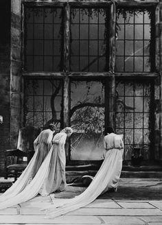 Dracula. (1931)    (via conclamtio-mortis)