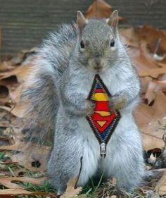 I'm superman! yes! I Iove it!