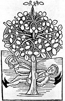 The Bohun Upas, the tree of poisons.  In European medieval lore, the Bohun Upas, native to farway Malay, was a tree so toxic, its fumes killed all plants and animals for miles around.  Anyone falling asleep under it would never awaken.  The legend was likely based on the Bausor Tree (Antiaris toxicaria), whose poisonous sap was used by natives to coat arrows.