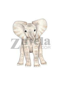 Ellie the Baby Elephant illustration - #giftideas for rad kids rooms!