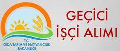 Tarım Bakanlığı Geçici İşçi Alımları Yapıyor http://www.isbasvurusu.org/2015/09/tarim-bakanligi-gecici-isci-alimlari-yapiyor.html