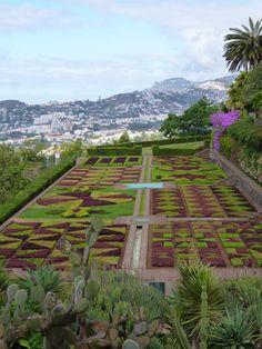 Jardim Botanico, Madeira Portugal (Luglio)