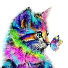 iFymei Paint by Number Kits Paintworks DIY Oil Painting for Kids and Adults Beginner, Colorful Animals Painting on Canvas ( Color Cats and Butterflies) Colorful Animals, Cute Animals, Colorful Animal Paintings, Photo Chat, Butterfly Painting, Cat Colors, Cross Paintings, Owl Paintings, Painting Canvas