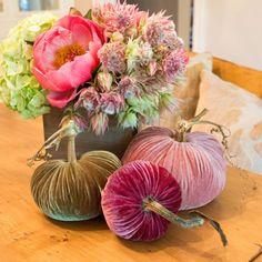 Handmade Velvet Pumpkins with Real Pumpkin Stems – Plush Pumpkins Pink Pumpkins, Velvet Pumpkins, Fabric Pumpkins, Fall Pumpkins, Autumn Crafts, Christmas Crafts, Spring Crafts, Flower Ball, Pumpkin Crafts