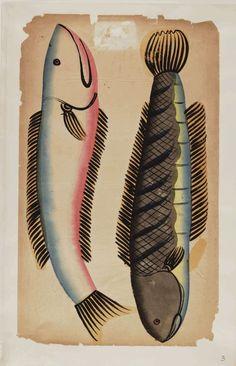 Kalighat paintings - Two saul fishes Indian Folk Art, Indian Artist, Cute Animal Illustration, Animal Illustrations, Geometric Deer, India Painting, Fish Tales, Academic Art, India Art