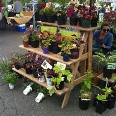 farmer's market display ideas - Bing images