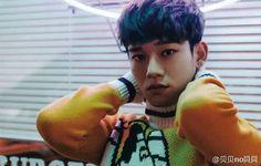 EXO • Chen  ~ Love Me Right ~