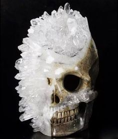 672056ab10c 1403 Best Skull Obsession images in 2019