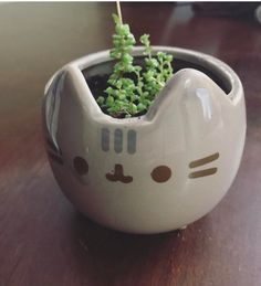 Pusheen planter via Crazy Cat Lady, Crazy Cats, Pusheen Cat, Gadget Gifts, My Room, Cat Lovers, Cute Animals, Creations, Kitty