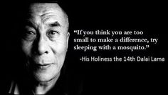 """""""If you think you are too small to make a difference, try sleeping with a mosquito."""" -- His Holiness the 14th Dalai Lama."""