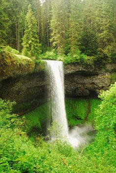 Walk-behind falls at our all-time favorite hike: Trail of Ten Falls at Silver Falls State Park, Oregon.