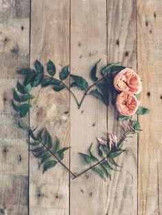 O caminho que eu escolhi é o do amor. Não importam as dores, as angústias, nem as decepções que eu vou ter que encarar. Escolhi ser verdadeira. No meu caminho, o abraço é apertado, o aperto de mão é sincero, por isso não estranhe a minha maneira de sorrir, de te desejar o bem. É só assim que eu enxergo a vida, e é só assim que eu acredito que valha a pena viver. (clarice lispector)