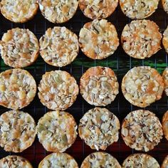 Easy Cheesy Bites Nut Free, Dairy Free, Gluten Free, Thermomix Bread, Savoury Biscuits, Mini Muffin Pan, Mini Muffins, Savory Snacks, Vegetarian Cheese