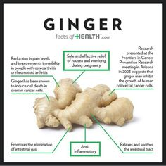 Gingers health benefits.