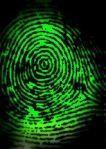 Can't get much more original than fingerprint art! Easy science/art lesson for kids.