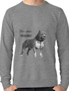 Shop from unique Boston Terrier Hoodies and Sweatshirts on Redbubble. Pre-shrunk, anti-pill fleece in lightweight and heavy-and-warm options. Casual Wear Women, Graphic Sweatshirt, T Shirt, Hoodies, Sweatshirts, Boston Terrier, Time Design, Long Sleeve, Mens Tops