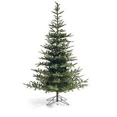 Fresh Cut Noblis Fir Artificial Christmas Tree