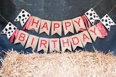 Hey, I found this really awesome Etsy listing at https://www.etsy.com/listing/251238859/barn-theme-party-banner-farm-happy
