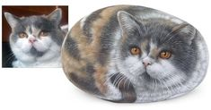 Camilla - acrylic on rock - 7 inches Rock Painting Art by Roberto Rizzo   Order now your pet portrait! www.robertorizzoart.net #rocks #rockart #robertorizzo #portraitpainting #paintedrocks #paintedstones #petlovers #petportraits #petportrait #cats #cat #greycat #greeneyes #paintedpebbles #animals #animalart #fineart #artworks #instacool #etsyshop #etsylove #etsy #rockpaintingart #catportraits #acrylics #pets