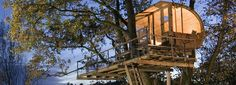 The Cool Hunter - Baumraum Treehouses