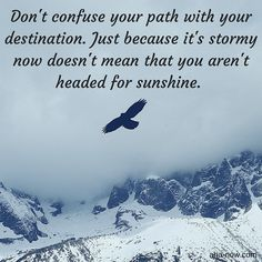 ~ Don't confuse your path with your destination. Just because it's stormy now doesn't mean that you aren't headed for sunshine. ~