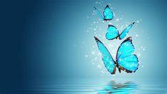 Glistening Magic Butterflies Sfondi Gratuiti Per Desktop