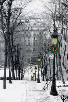 Christmas in Paris ~ how lovely!