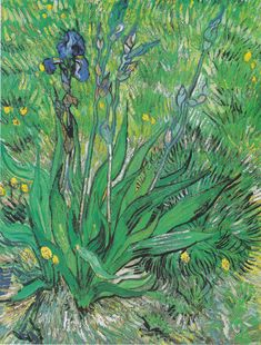 Vincent Van Gogh Iris 1000 Piece Puzzle: Claude Monet was a founder of French impressionist painting, and the most consistent and prolific pra Vincent Van Gogh Werke, Vincent Willem Van Gogh, Art Van, Flores Van Gogh, Desenhos Van Gogh, Van Gogh Flowers, Van Gogh Arte, Van Gogh Pinturas, Van Gogh Paintings