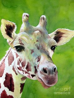 Giraffe on Green art print watercolor reproduction Giraffe Painting, Giraffe Art, Watercolor Animals, Watercolor Paintings, Watercolours, Animal Paintings, Animal Drawings, Giraffe Pictures, Duck Art