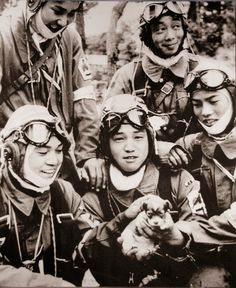 Historienblog: Kamikaze - Mach's gut kleiner Welpe, liebes Leben....
