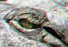 Crocodile eye 3D