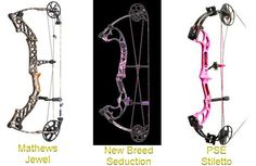 Compound Bows love the PSE