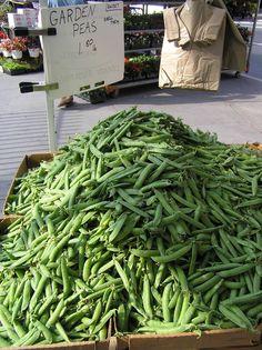 Garden peas at the Union Square greenmarket