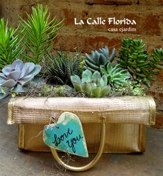 jardim na sacola !!! email:lacalleflorida@uol.com.br