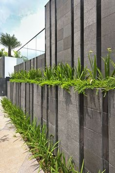 Best Concrete Fencing Design Ideas For Backyard Remodeling Plan The material of a fence holds an important role when you are about to build one for your beloved home. It has to be such a primary consideration before you . Read more… Landscape Walls, Landscape Design, Boundry Wall, Compound Wall Design, Garden Wall Designs, Modern Fence Design, Wall Exterior, Concrete Fence, Walled Garden
