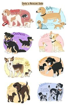 shelter dogs for auction AUTOS posted by The Effective Pictures We Offer You About Pet dogs dress A quality … Cute Dog Drawing, Cute Animal Drawings, Animal Sketches, Kawaii Drawings, Cute Drawings, Dog Drawings, Cute Fantasy Creatures, Mythical Creatures Art, Animal Design