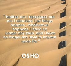 Welcome to the world of OSHO – an opportunity to experience for yourself the essence of meditation. Osho Meditation, Revolutionaries, Favorite Quotes, Facts, Peace, Science, Let It Be, Shit Happens, How To Plan