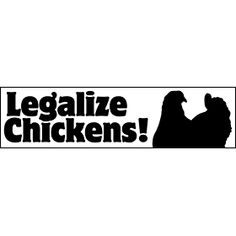 Legalize Chickens Magnetic Bumper from My Pet Chicken