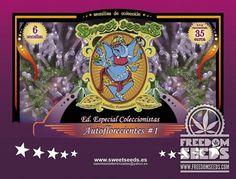 Sweet Seeds - Autoflower Collection - Fem Seeds