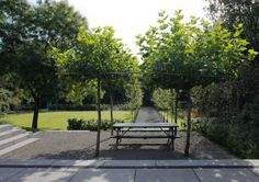 700 martin veltkamp garden Quiet landscape by Martin Velkamp