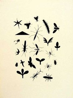 Elements: Colour, Shape, Principles: Variety Printmaking, Nativity, Insects, Symbols, Shapes, Bats, Artist, Prints, Inspire