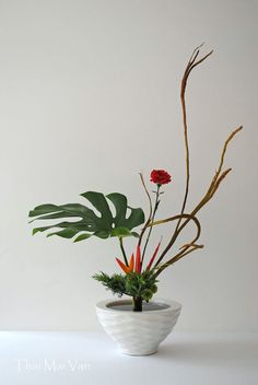 ikebana I never thought of using the leaves of my tropicals in ikebana. They take root and stay fresh forever. Ikebana Flower Arrangement, Ikebana Arrangements, Floral Arrangements, Tall Indoor Plants, Indoor Flowering Plants, Arte Floral, Bonsai, Arreglos Ikebana, Ikebana Sogetsu