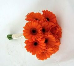 orange gerber daisy bouquet.--navy ribbon instead :)