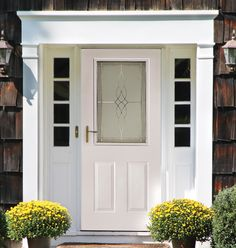 DECORATIVE LITE EXTERIOR STEEL DOOR UNIT