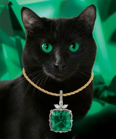 Embrace Friday the 13th with a fabulous 25-carat Colombian emerald...pictured on our Cajun kitty, Lulu.   Richard Krementz Gemstones