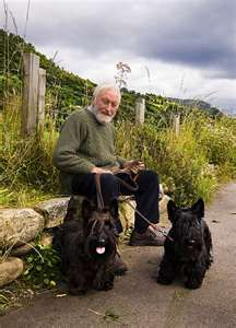 A gent 'n two Scottish Terriers in Scotland.