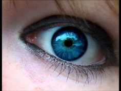 All Blue Eyed People Distant Relatives?