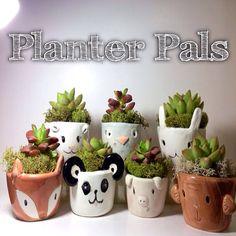 Handmade Animal Porcelain Planter by MuddyHeartPottery, $28.00